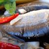 Manfaat Ikan Gabus Mempercepat Penyembuhan Setelah Operasi