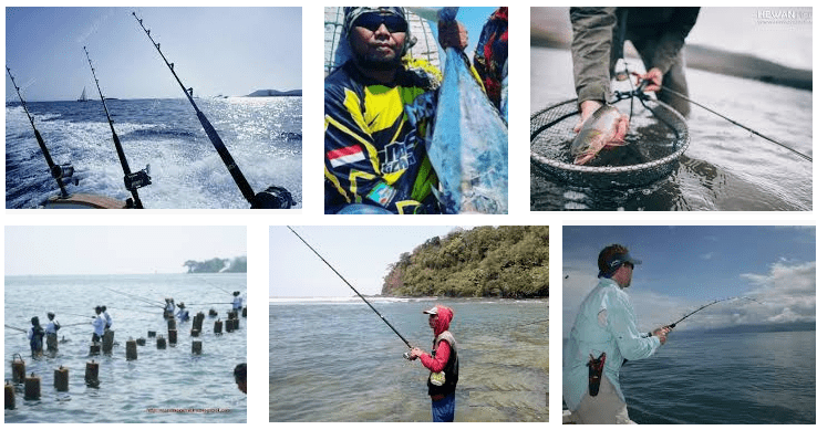 8 Cara Mencari Spot Memancing Di Laut