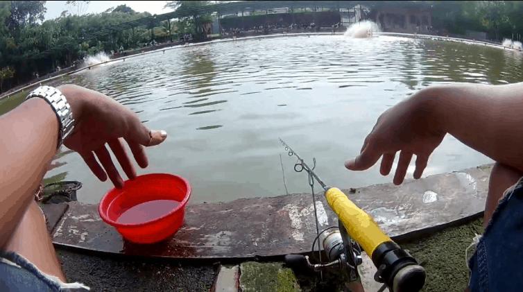 Trik Curang Mancing Ikan Mas