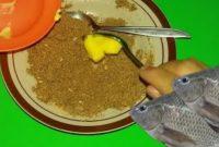 Trik Nila Gak Mau Makan Silahkan Praktik Cara Ini